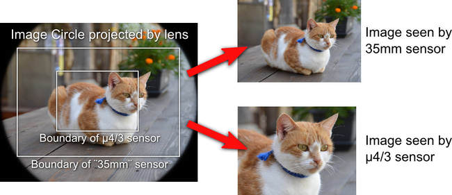Kích thước cảm biến, phối cảnh và độ sâu trường ảnh